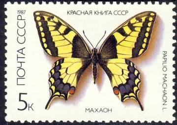 http://s4.uploads.ru/t/PiOnW.jpg