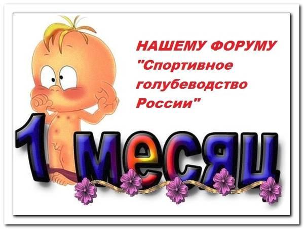 http://s4.uploads.ru/t/Q1vfd.jpg