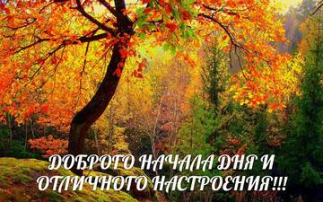 http://s4.uploads.ru/t/QwU1C.jpg