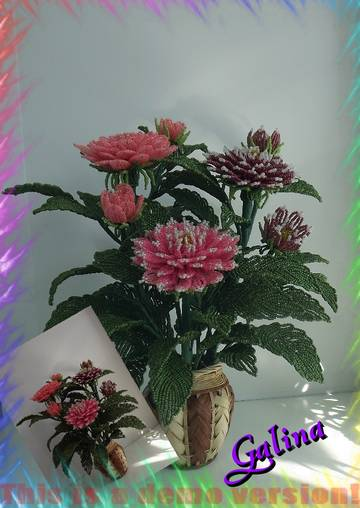 http://s4.uploads.ru/t/RAMg6.jpg