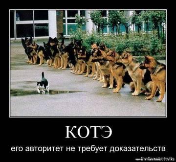 http://s4.uploads.ru/t/SzN6K.jpg