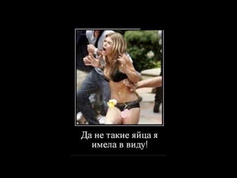 http://s4.uploads.ru/t/TXthv.jpg