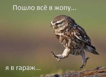 http://s4.uploads.ru/t/TsY2v.jpg