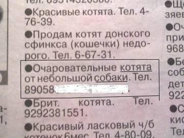 http://s4.uploads.ru/t/Vh92P.jpg