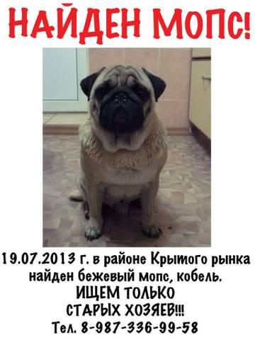 http://s4.uploads.ru/t/Vv1r5.jpg