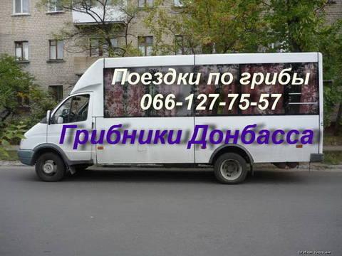 http://s4.uploads.ru/t/Wit8x.jpg