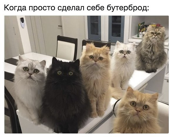 http://s4.uploads.ru/t/YdFDQ.jpg