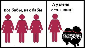 http://s4.uploads.ru/t/Z48jV.jpg