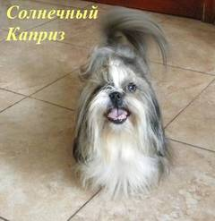http://s4.uploads.ru/t/ZQRgo.jpg