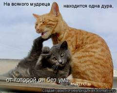 http://s4.uploads.ru/t/ZQwrx.jpg