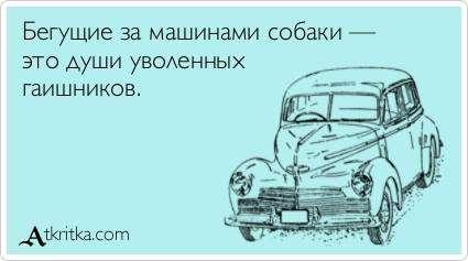 http://s4.uploads.ru/t/aHQGk.jpg