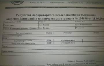 http://s4.uploads.ru/t/bfVms.jpg