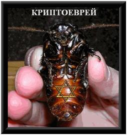 http://s4.uploads.ru/t/brRHq.jpg