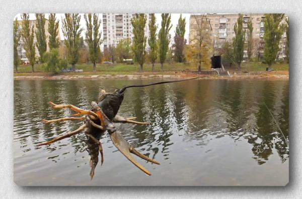http://s4.uploads.ru/t/cNoFh.jpg