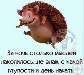 http://s4.uploads.ru/t/d6YKI.jpg