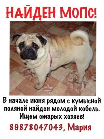 http://s4.uploads.ru/t/dliQa.jpg