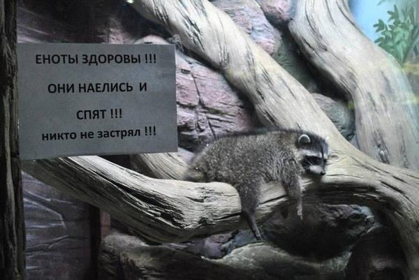 http://s4.uploads.ru/t/fbnN4.jpg