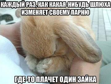 http://s4.uploads.ru/t/hVR9W.jpg