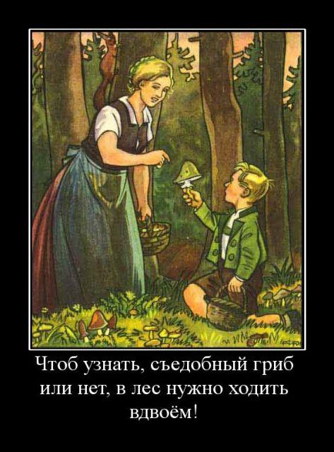 http://s4.uploads.ru/t/hdPD8.jpg