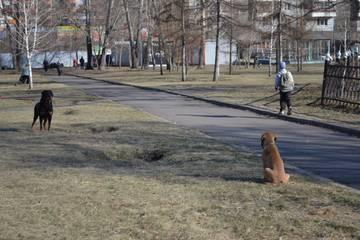 http://s4.uploads.ru/t/hucWN.jpg
