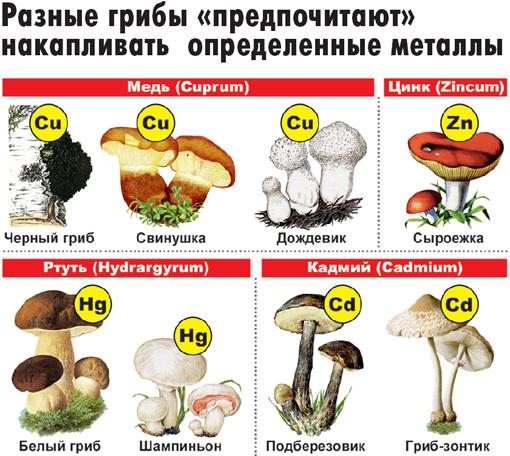 http://s4.uploads.ru/t/iHf3a.jpg