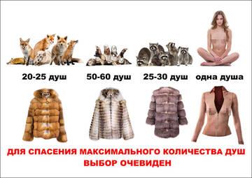 http://s4.uploads.ru/t/jFmeP.jpg