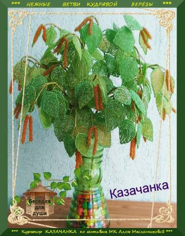 http://s4.uploads.ru/t/jzmIv.jpg