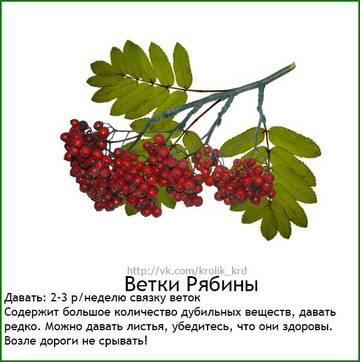 http://s4.uploads.ru/t/krW0j.jpg