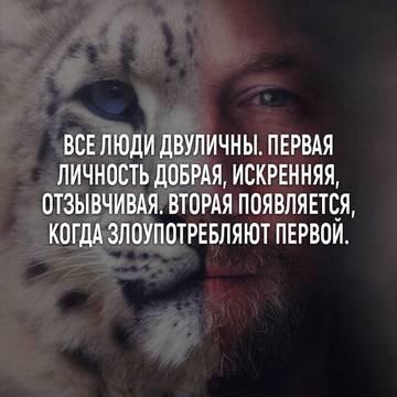 http://s4.uploads.ru/t/o87N6.jpg
