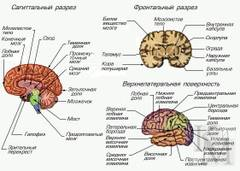 http://s4.uploads.ru/t/oRd5K.jpg