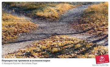 http://s4.uploads.ru/t/oZbQC.jpg