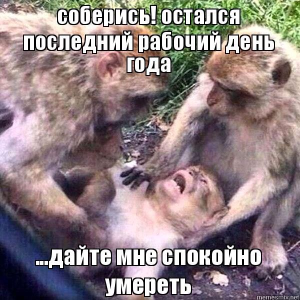 http://s4.uploads.ru/t/ocVTI.jpg