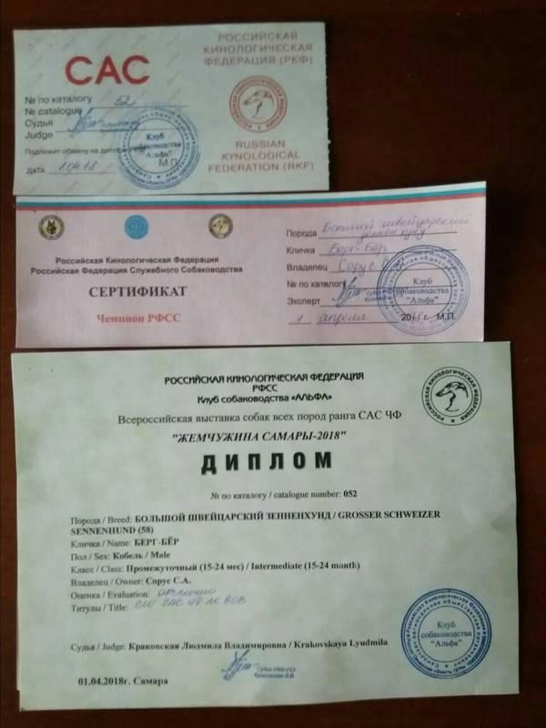 http://s4.uploads.ru/t/pI9dk.jpg