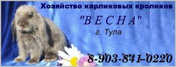 http://s4.uploads.ru/t/piJIr.jpg