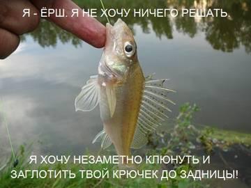 http://s4.uploads.ru/t/q0f9H.jpg