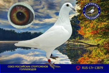 http://s4.uploads.ru/t/qbTZu.jpg