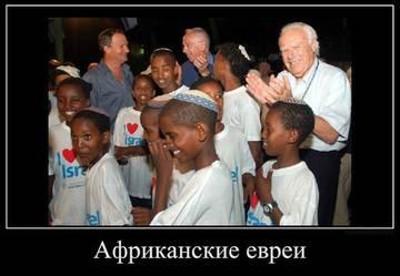 http://s4.uploads.ru/t/r2yWn.jpg