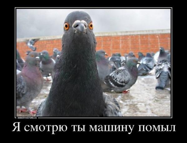 http://s4.uploads.ru/t/s4iHa.png