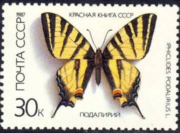 http://s4.uploads.ru/t/s9HSd.jpg