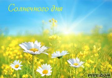 http://s4.uploads.ru/t/sD9yo.jpg