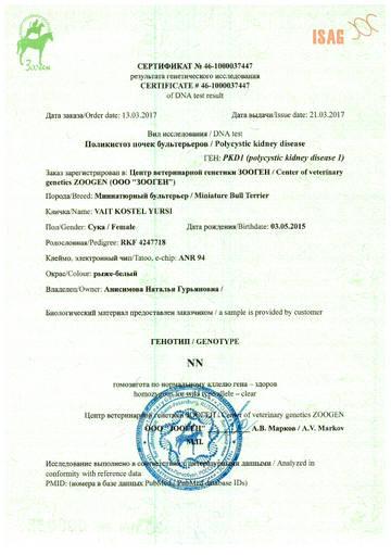 http://s4.uploads.ru/t/ujVzc.jpg