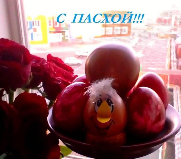 http://s4.uploads.ru/t/up7g9.jpg