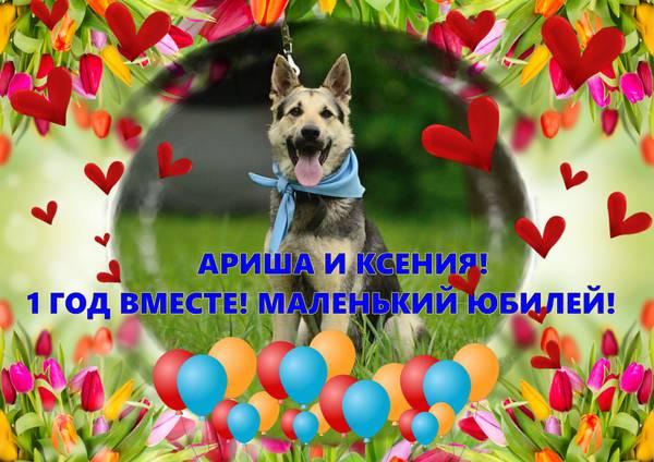 http://s4.uploads.ru/t/uwhVI.jpg