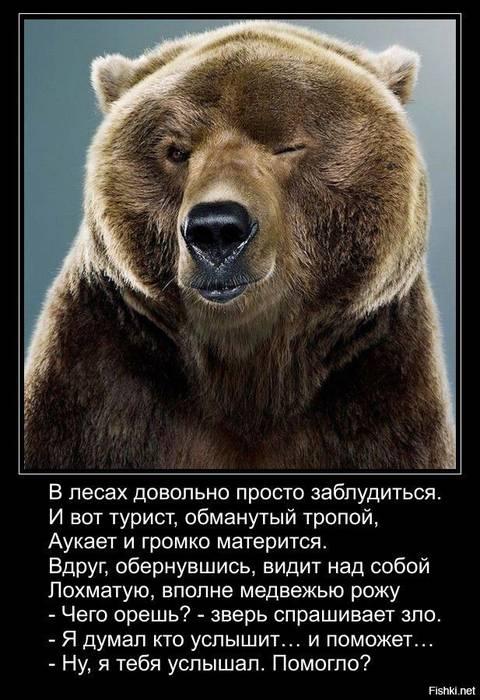 http://s4.uploads.ru/t/v0g23.jpg