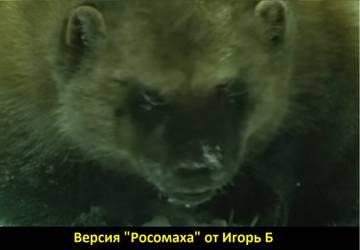 http://s4.uploads.ru/t/wABsJ.jpg
