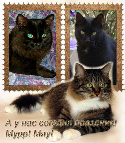 http://s4.uploads.ru/t/wq17R.jpg
