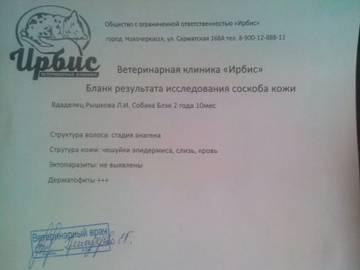 http://s4.uploads.ru/t/wzC4i.jpg