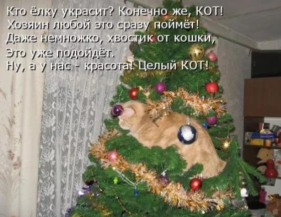 http://s4.uploads.ru/t/xiRBq.png