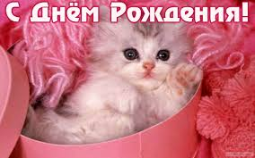 http://s4.uploads.ru/t/yHvmg.jpg