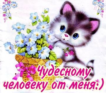 http://s4.uploads.ru/t/z2WuN.jpg